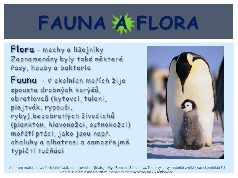 Fauna a flora