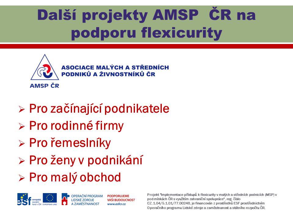 Další projekty AMSP ČR na podporu flexicurity