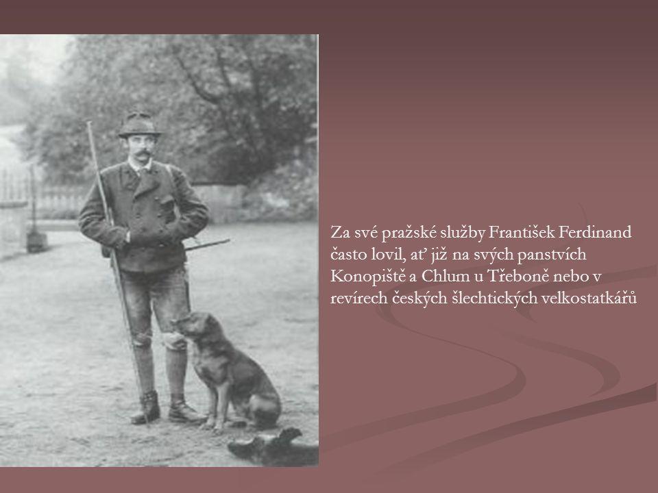 Za své pražské služby František Ferdinand často lovil, ať již na svých panstvích Konopiště a Chlum u Třeboně nebo v revírech českých šlechtických velkostatkářů