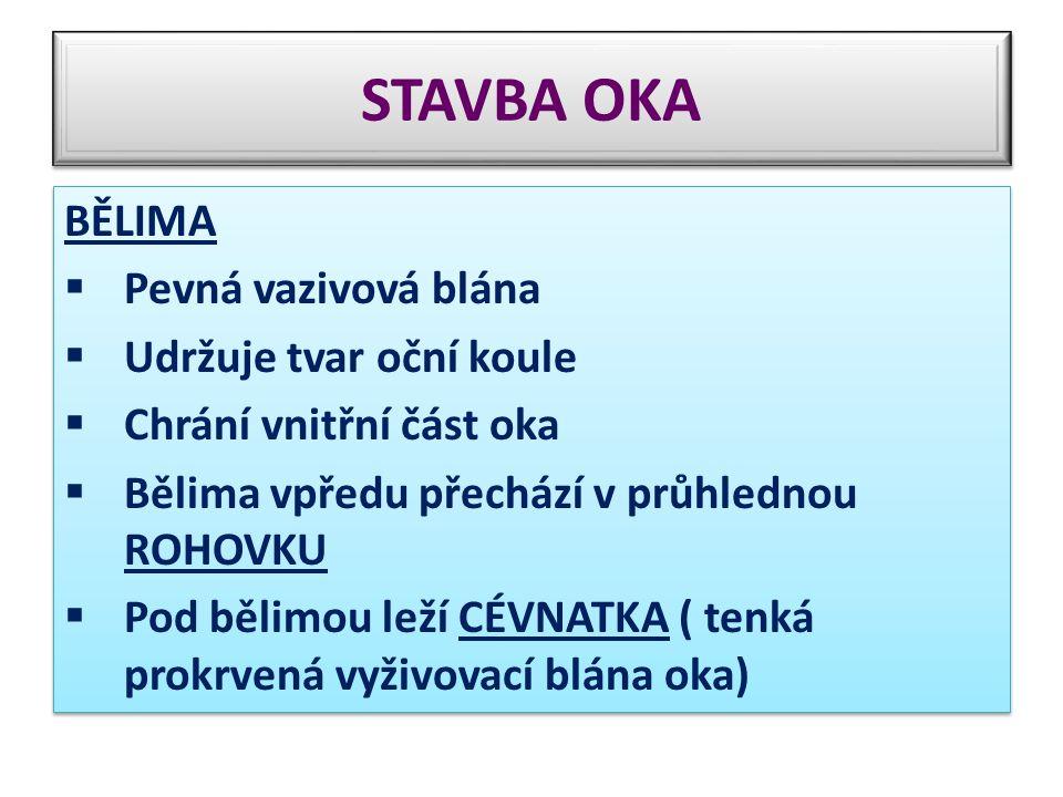 STAVBA OKA BĚLIMA Pevná vazivová blána Udržuje tvar oční koule