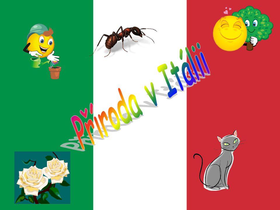 Příroda v Itálii