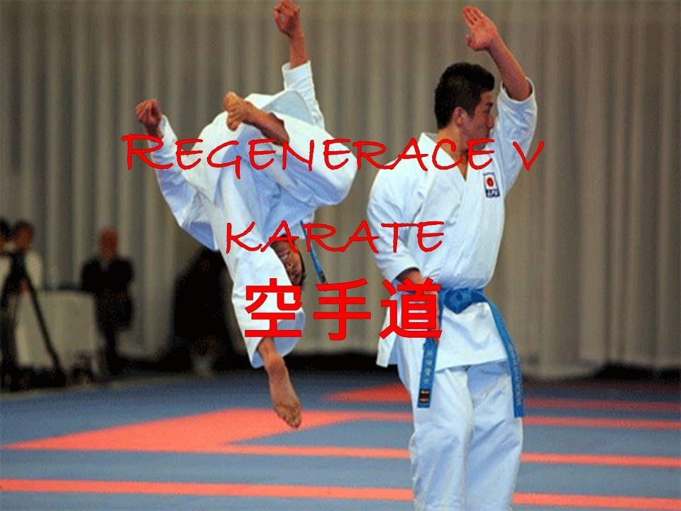 Regenerace v karate 空手道