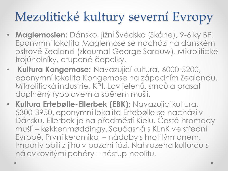 Mezolitické kultury severní Evropy