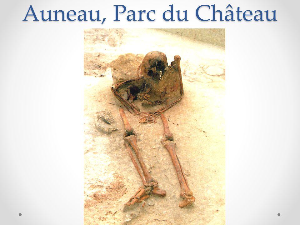 Auneau, Parc du Château