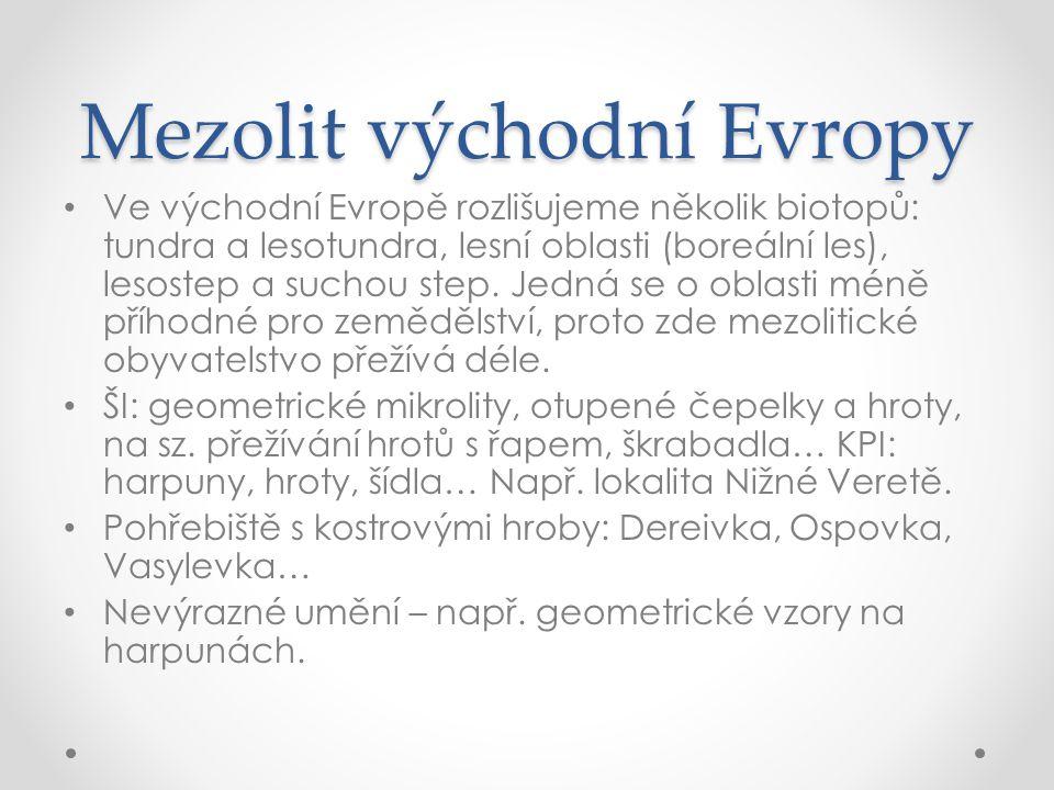 Mezolit východní Evropy