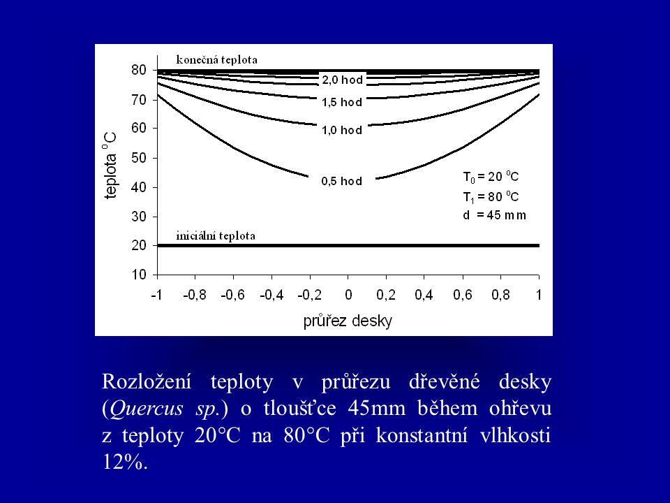 Rozložení teploty v průřezu dřevěné desky (Quercus sp