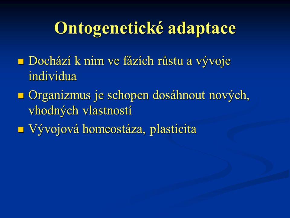 Ontogenetické adaptace