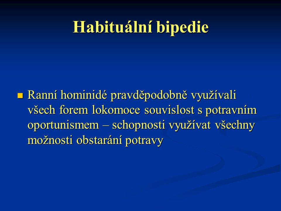 Habituální bipedie