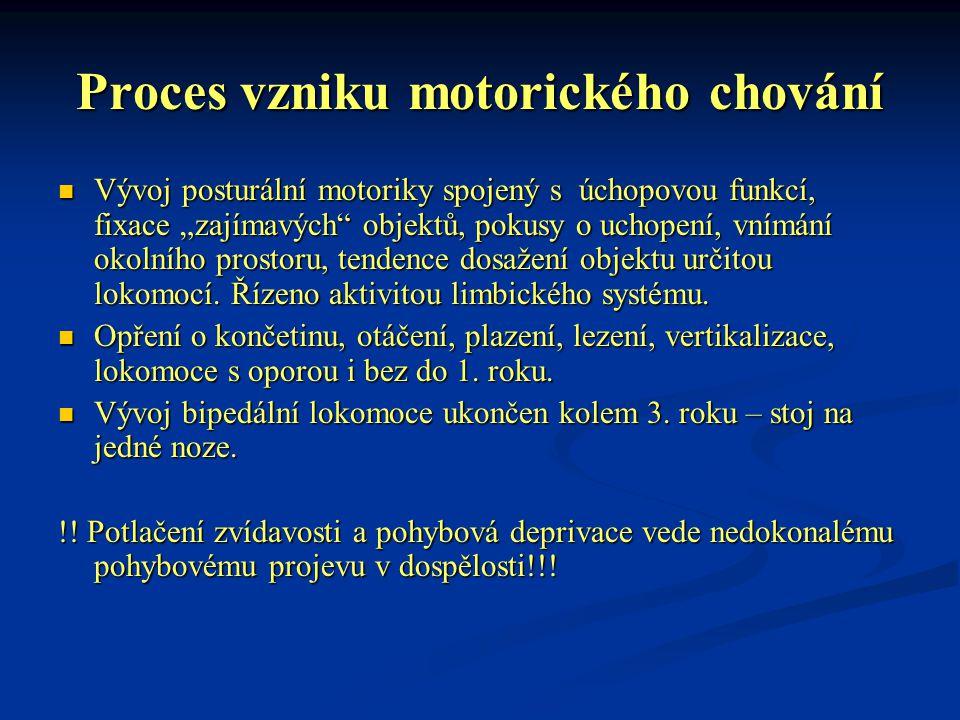 Proces vzniku motorického chování
