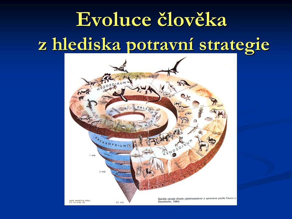 Evoluce člověka z hlediska potravní strategie