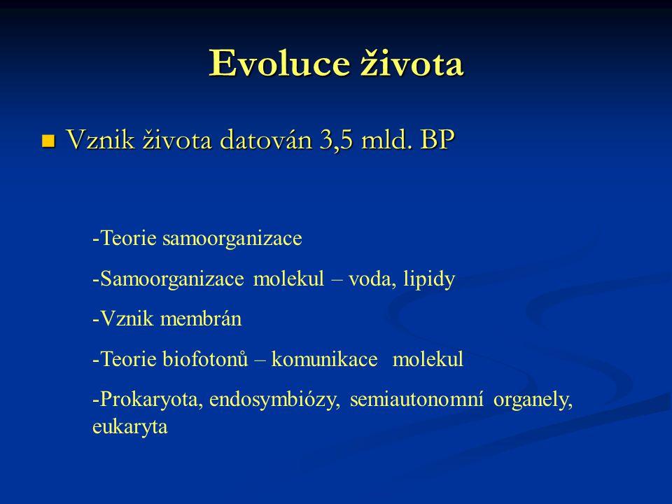 Evoluce života Vznik života datován 3,5 mld. BP Teorie samoorganizace