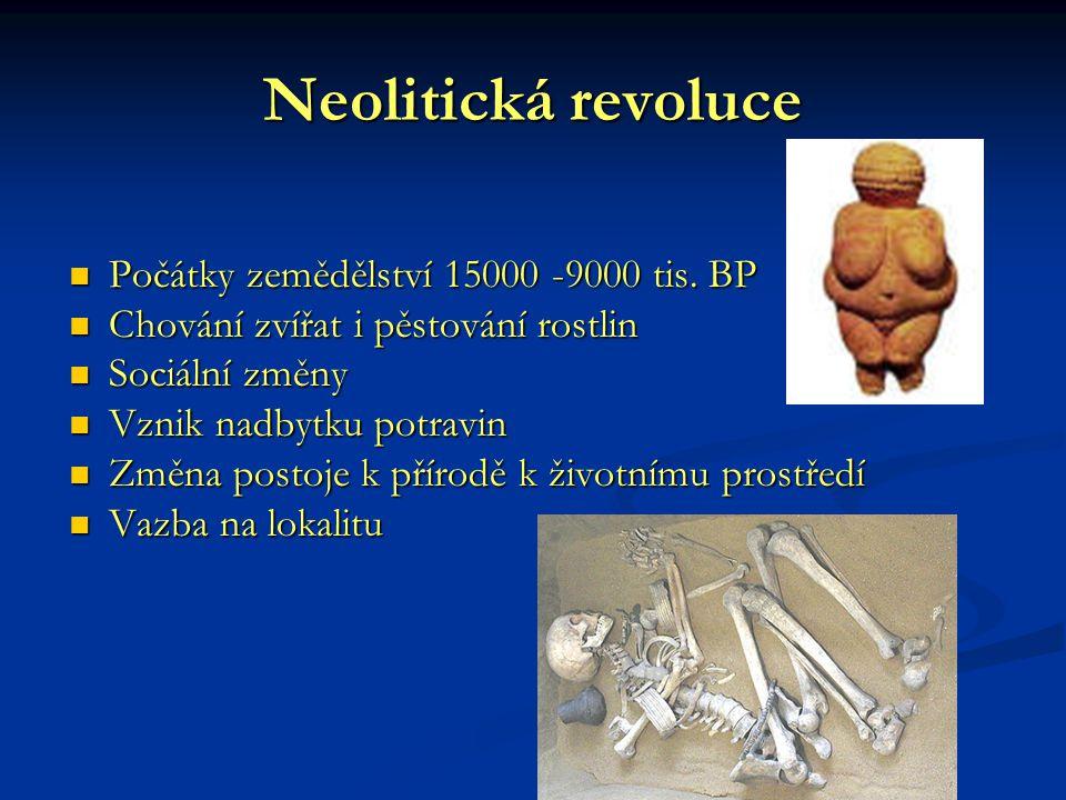 Neolitická revoluce Počátky zemědělství 15000 -9000 tis. BP