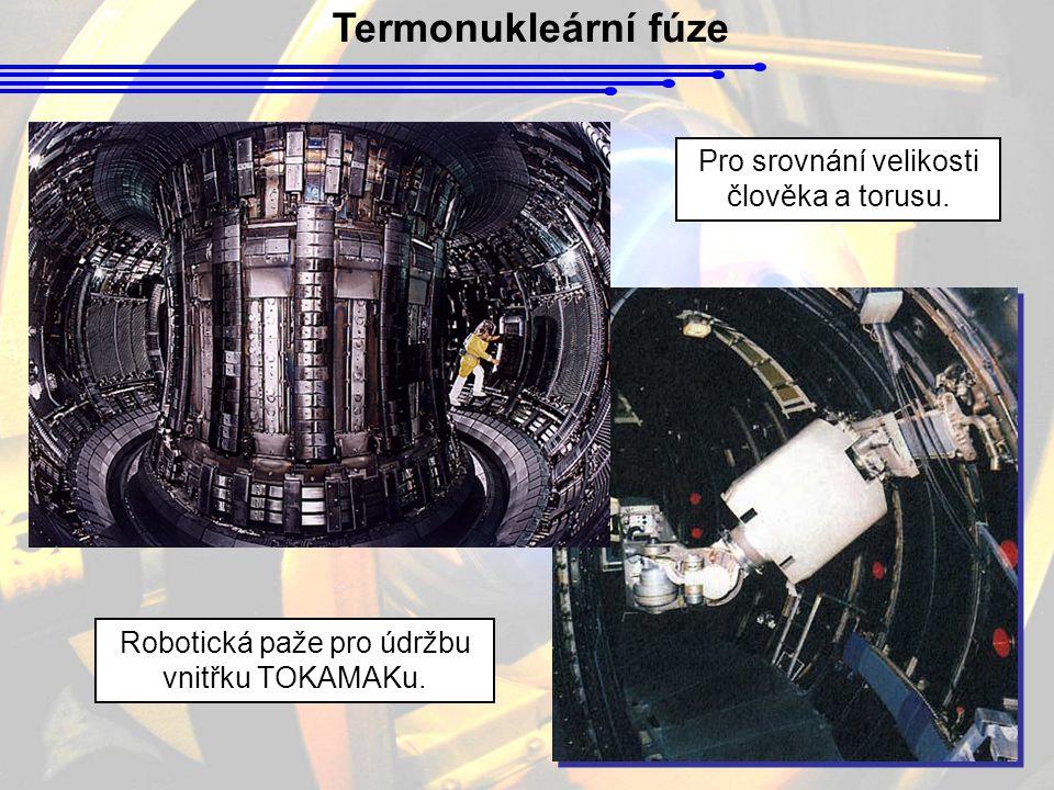 Termonukleární fúze Pro srovnání velikosti člověka a torusu.