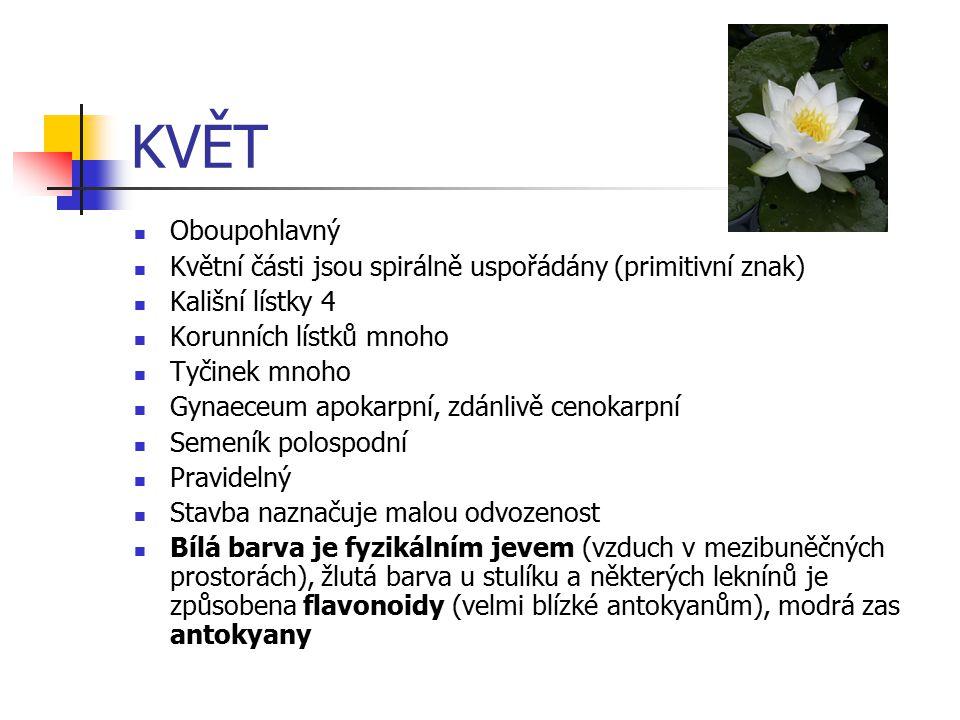 KVĚT Oboupohlavný. Květní části jsou spirálně uspořádány (primitivní znak) Kališní lístky 4. Korunních lístků mnoho.