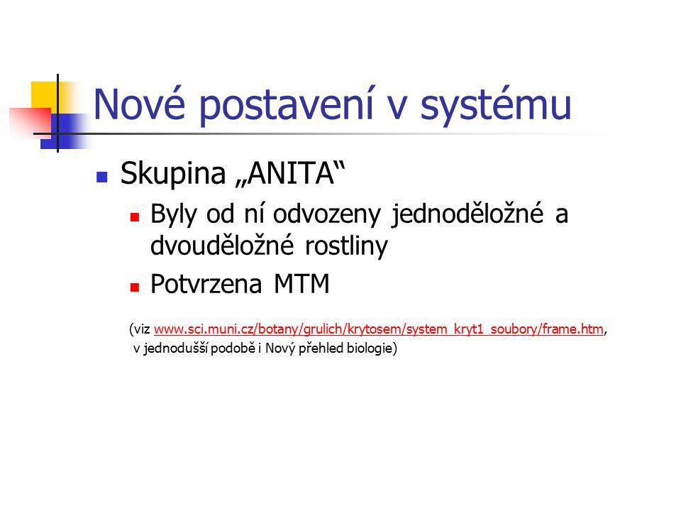 Nové postavení v systému