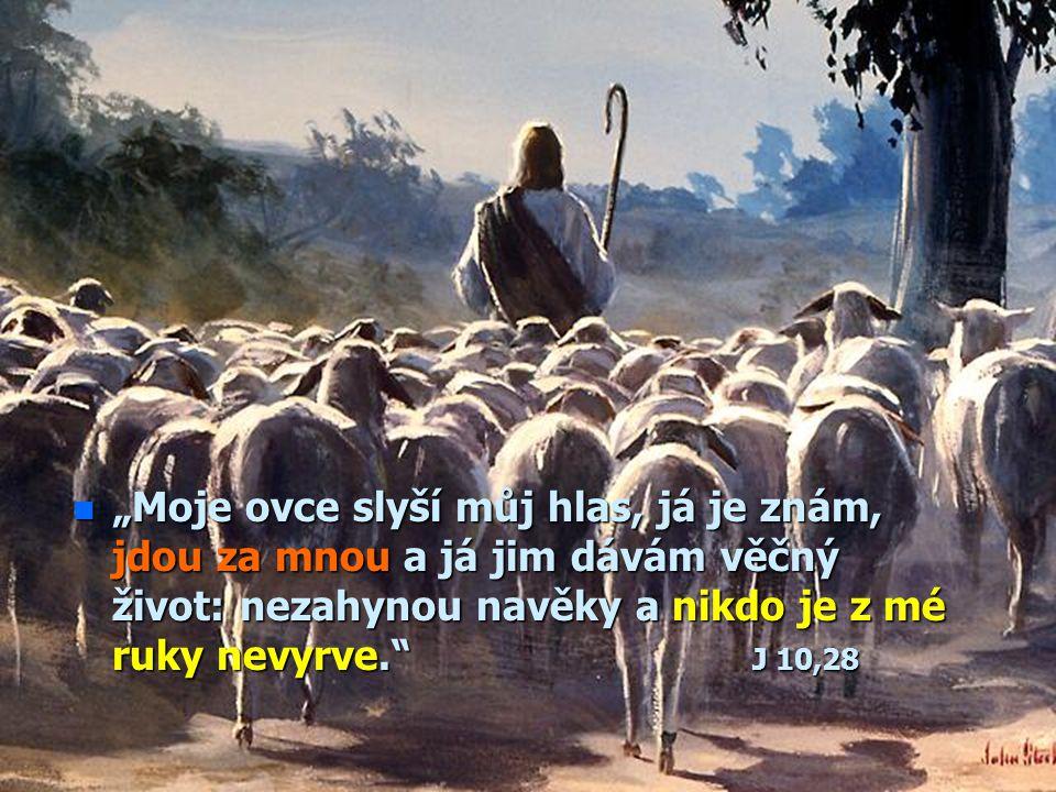 """""""Moje ovce slyší můj hlas, já je znám, jdou za mnou a já jim dávám věčný život: nezahynou navěky a nikdo je z mé ruky nevyrve. J 10,28"""