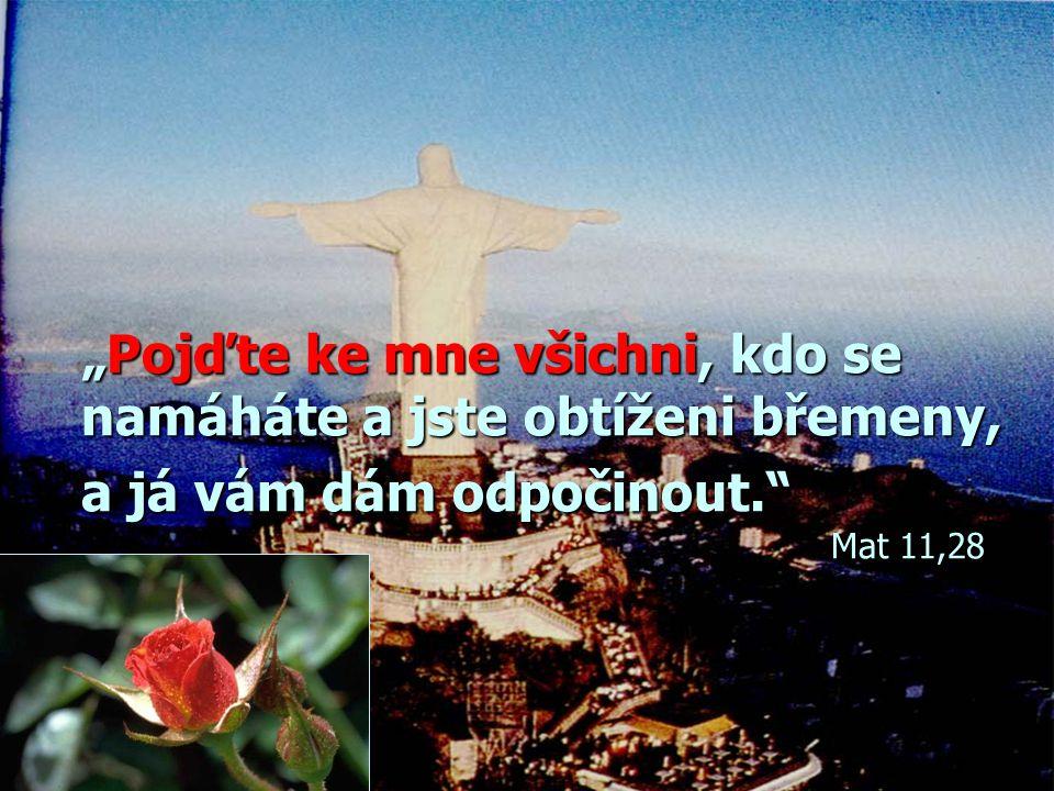"""""""Pojďte ke mne všichni, kdo se namáháte a jste obtíženi břemeny, a já vám dám odpočinout. Mat 11,28"""