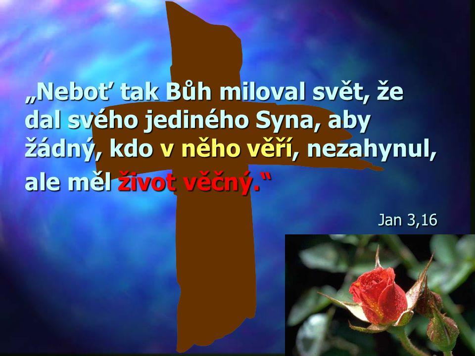 """""""Neboť tak Bůh miloval svět, že dal svého jediného Syna, aby žádný, kdo v něho věří, nezahynul, ale měl život věčný. Jan 3,16"""