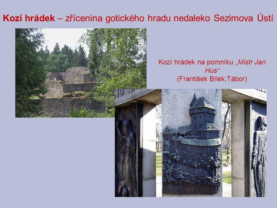 Kozí hrádek – zřícenina gotického hradu nedaleko Sezimova Ústí