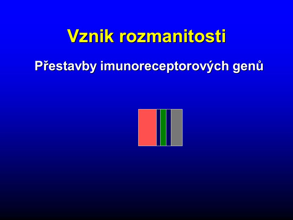 Přestavby imunoreceptorových genů