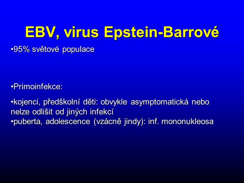 EBV, virus Epstein-Barrové