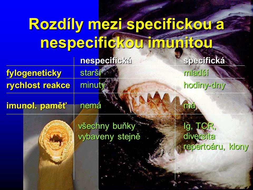 Rozdíly mezi specifickou a nespecifickou imunitou