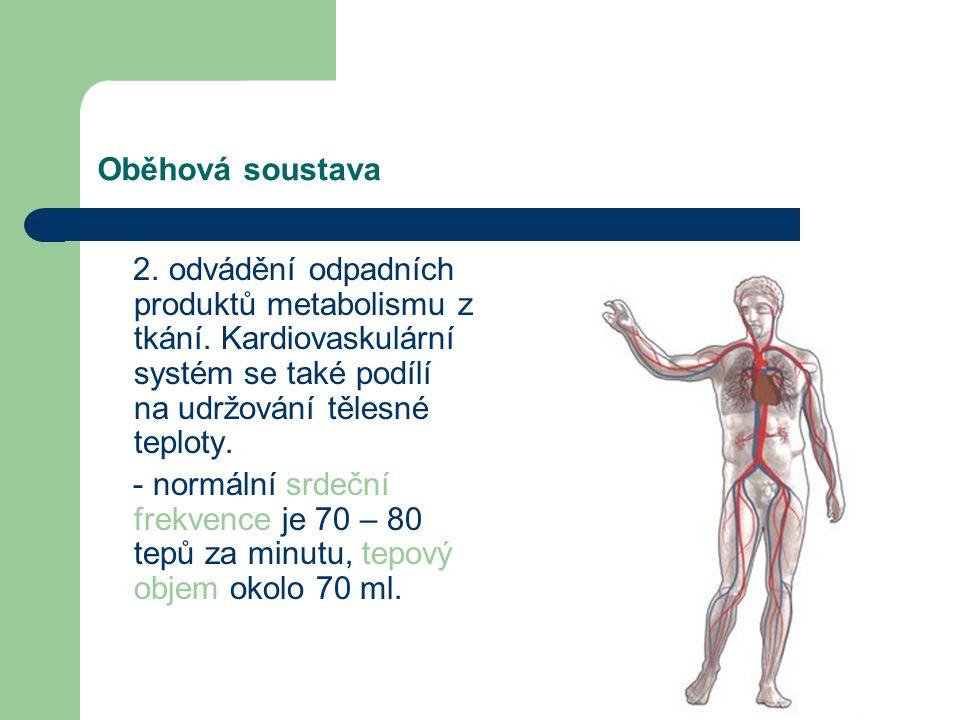 Oběhová soustava 2. odvádění odpadních produktů metabolismu z tkání. Kardiovaskulární systém se také podílí na udržování tělesné teploty.