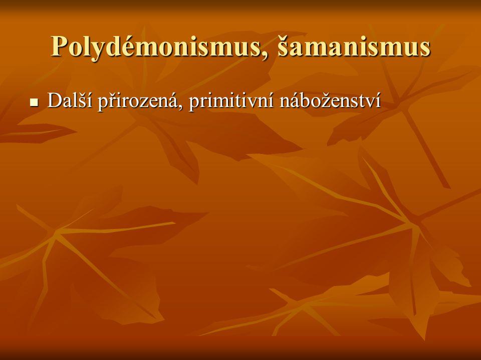 Polydémonismus, šamanismus