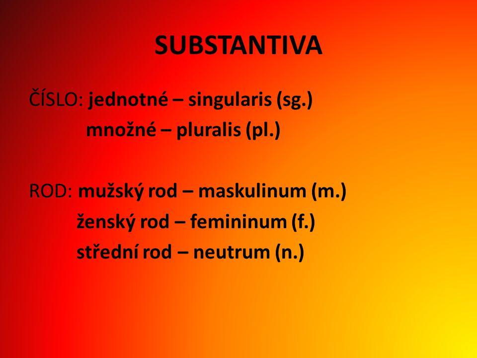 SUBSTANTIVA