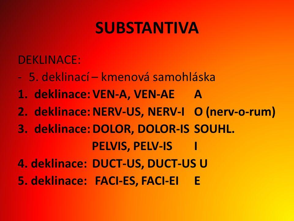 SUBSTANTIVA DEKLINACE: 5. deklinací – kmenová samohláska