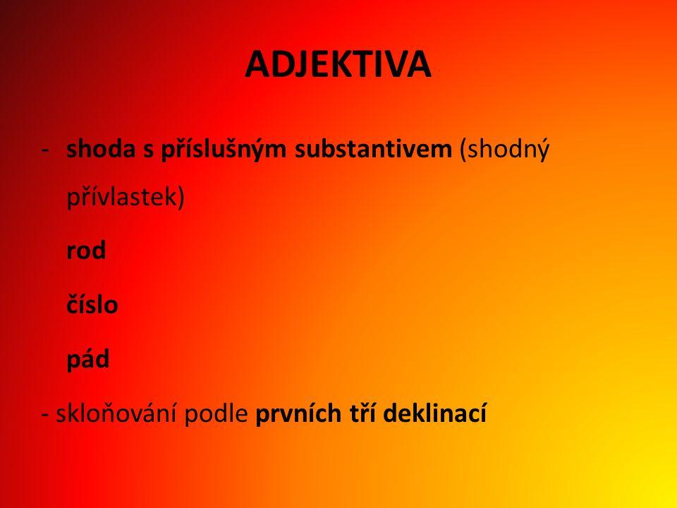 ADJEKTIVA shoda s příslušným substantivem (shodný přívlastek) rod