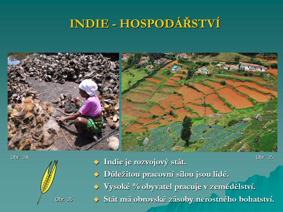 INDIE - HOSPODÁŘSTVÍ Indie je rozvojový stát.