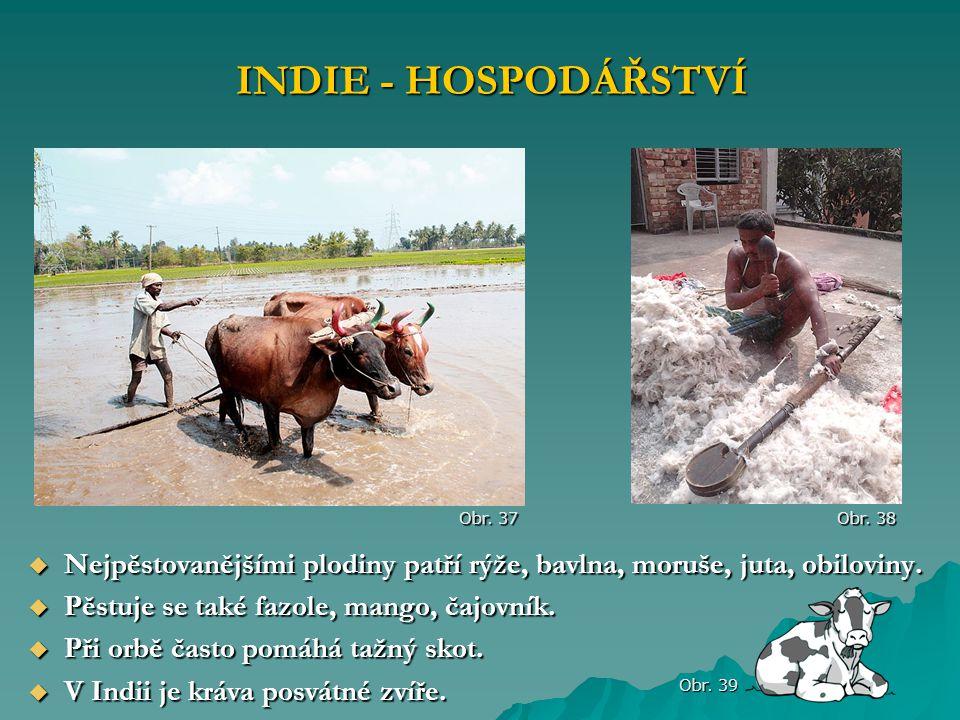 INDIE - HOSPODÁŘSTVÍ Obr. 37. Obr. 38. Nejpěstovanějšími plodiny patří rýže, bavlna, moruše, juta, obiloviny.