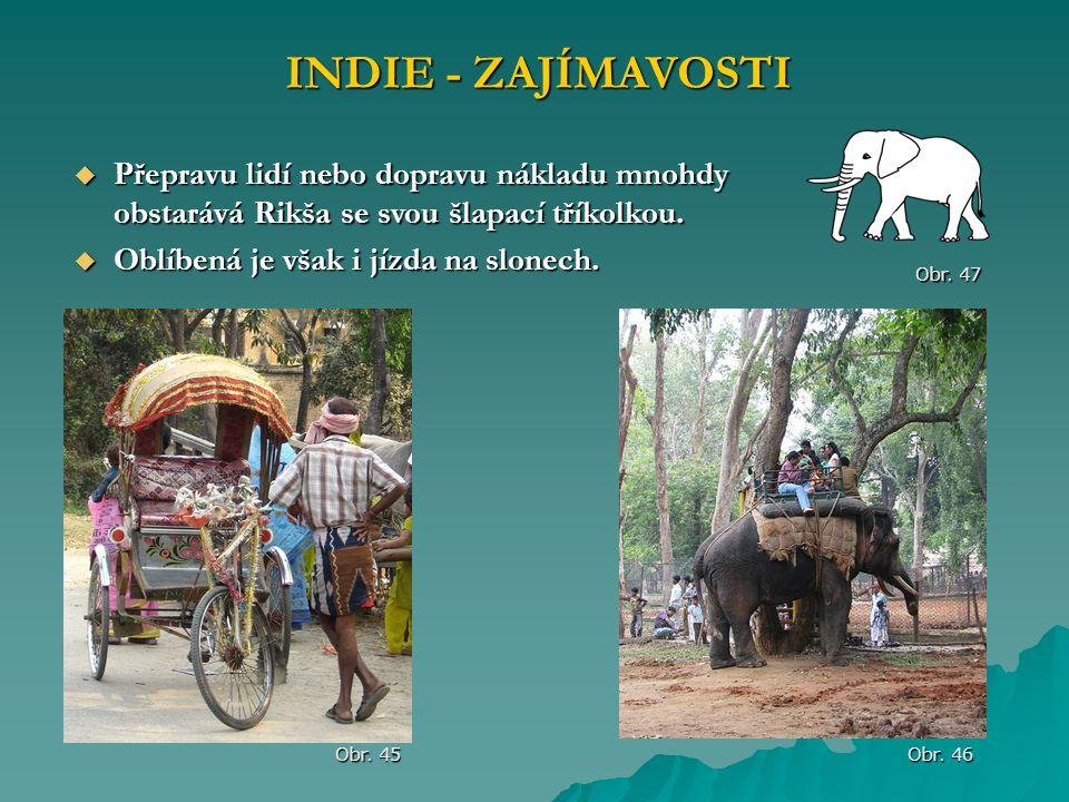 INDIE - ZAJÍMAVOSTI Přepravu lidí nebo dopravu nákladu mnohdy obstarává Rikša se svou šlapací tříkolkou.