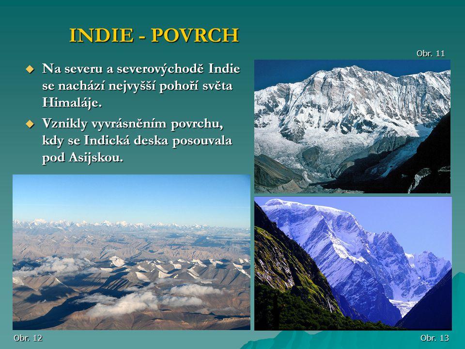 INDIE - POVRCH Obr. 11. Na severu a severovýchodě Indie se nachází nejvyšší pohoří světa Himaláje.