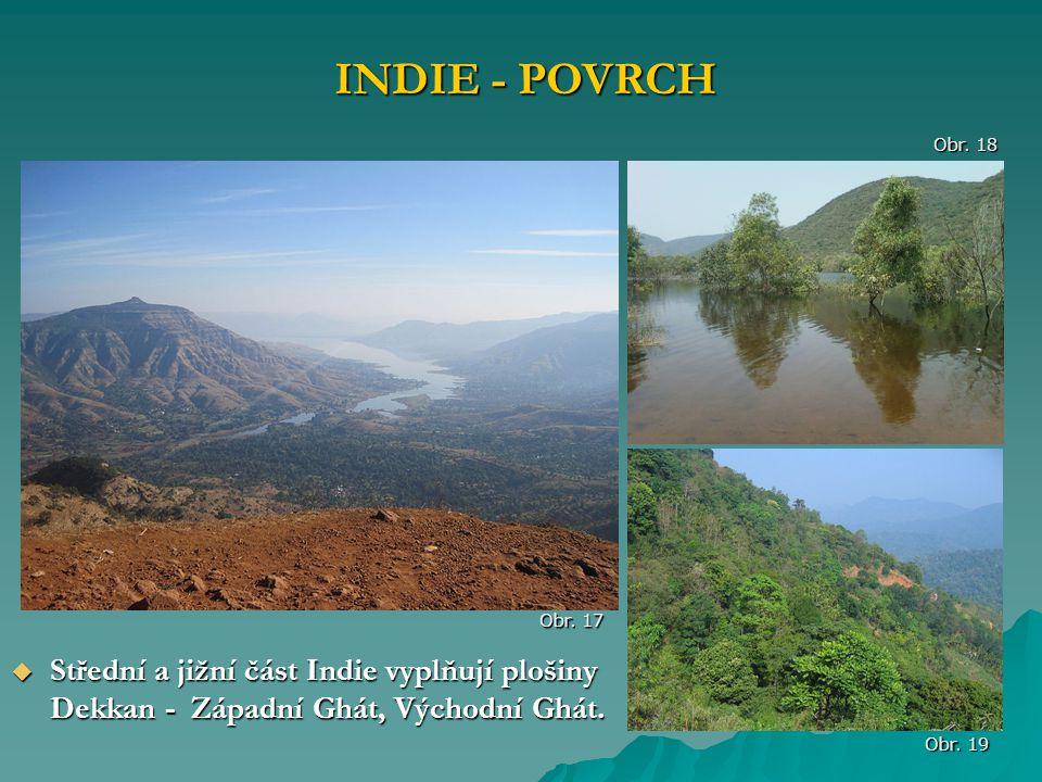 INDIE - POVRCH Obr. 18. Obr. 17. Střední a jižní část Indie vyplňují plošiny Dekkan - Západní Ghát, Východní Ghát.