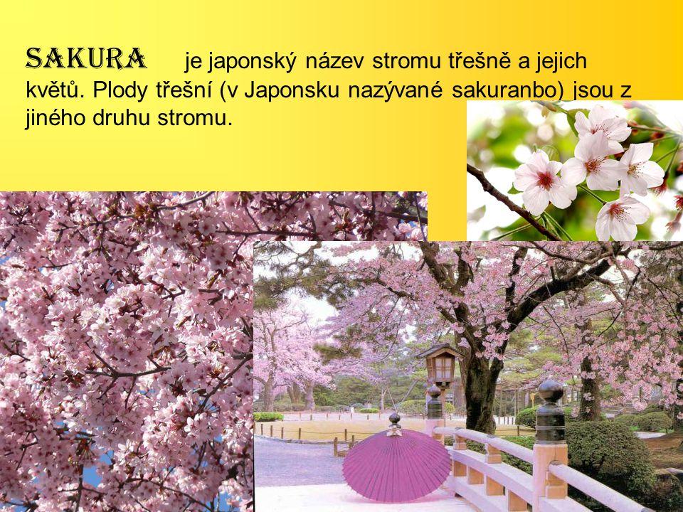 SAKURA je japonský název stromu třešně a jejich květů