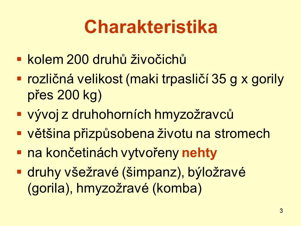 Charakteristika kolem 200 druhů živočichů