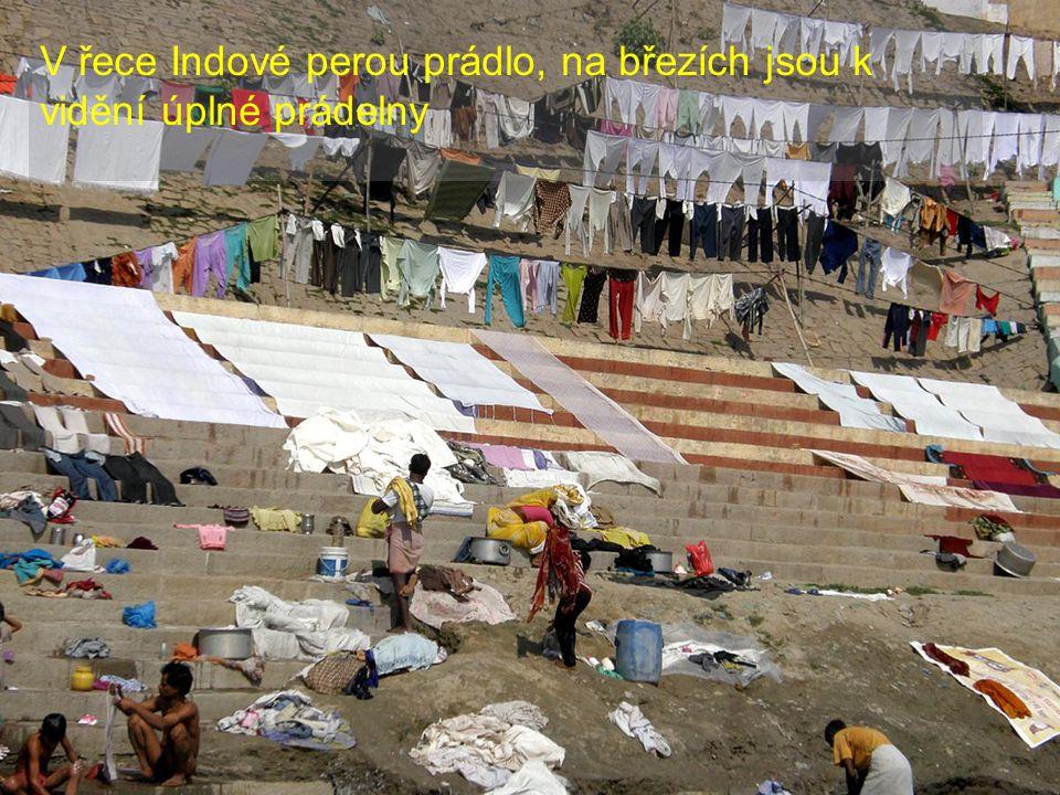 V řece Indové perou prádlo, na březích jsou k vidění úplné prádelny
