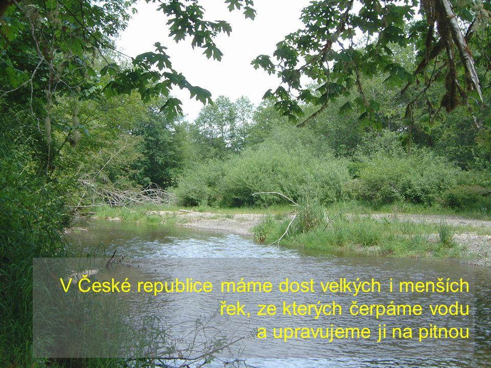 V České republice máme dost velkých i menších řek, ze kterých čerpáme vodu a upravujeme ji na pitnou