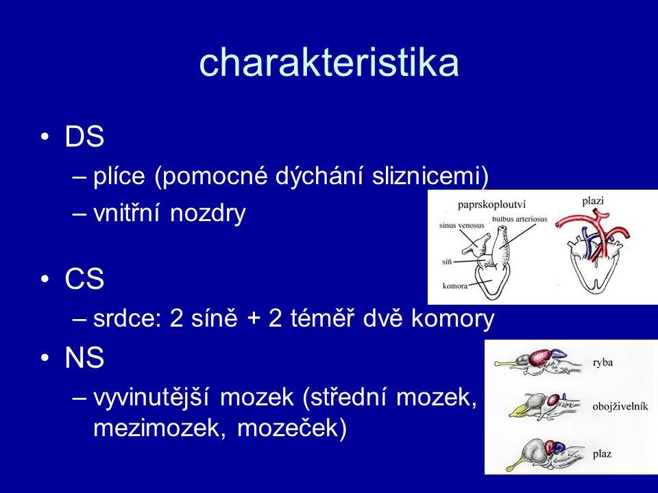charakteristika DS CS NS plíce (pomocné dýchání sliznicemi)