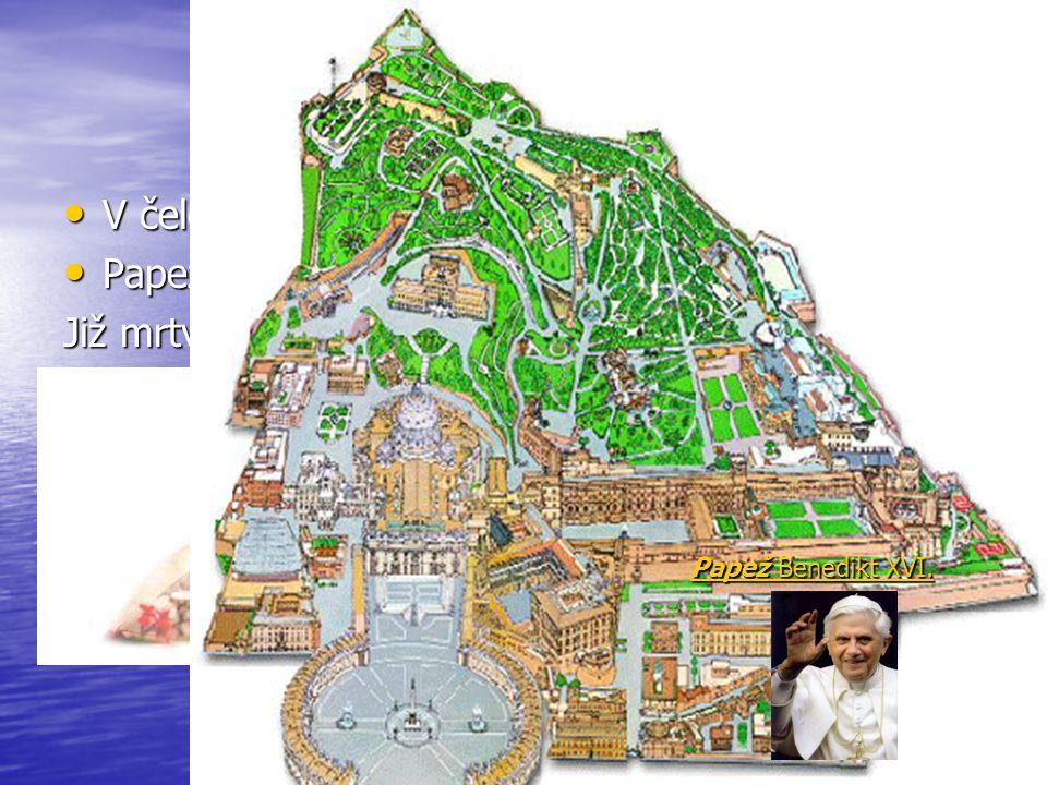 V čele Římskokatolické církve stojí papež