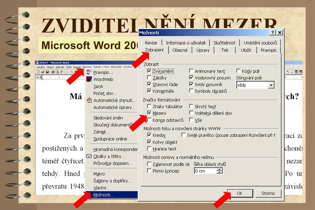 ZVIDITELNĚNÍ MEZER Microsoft Word 2000