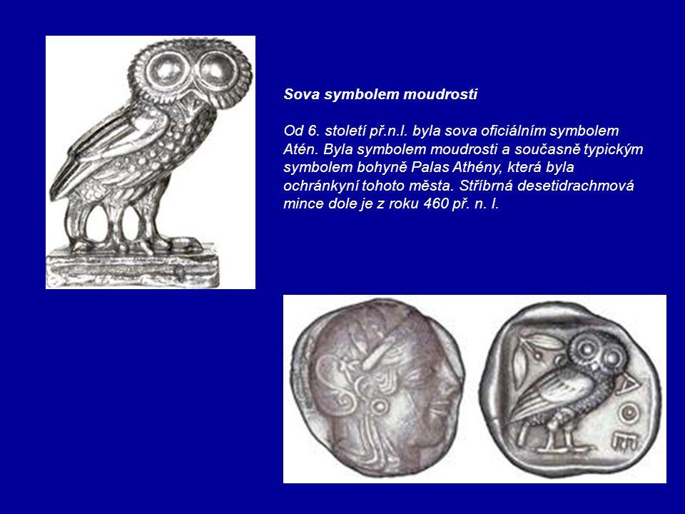 Sova symbolem moudrosti