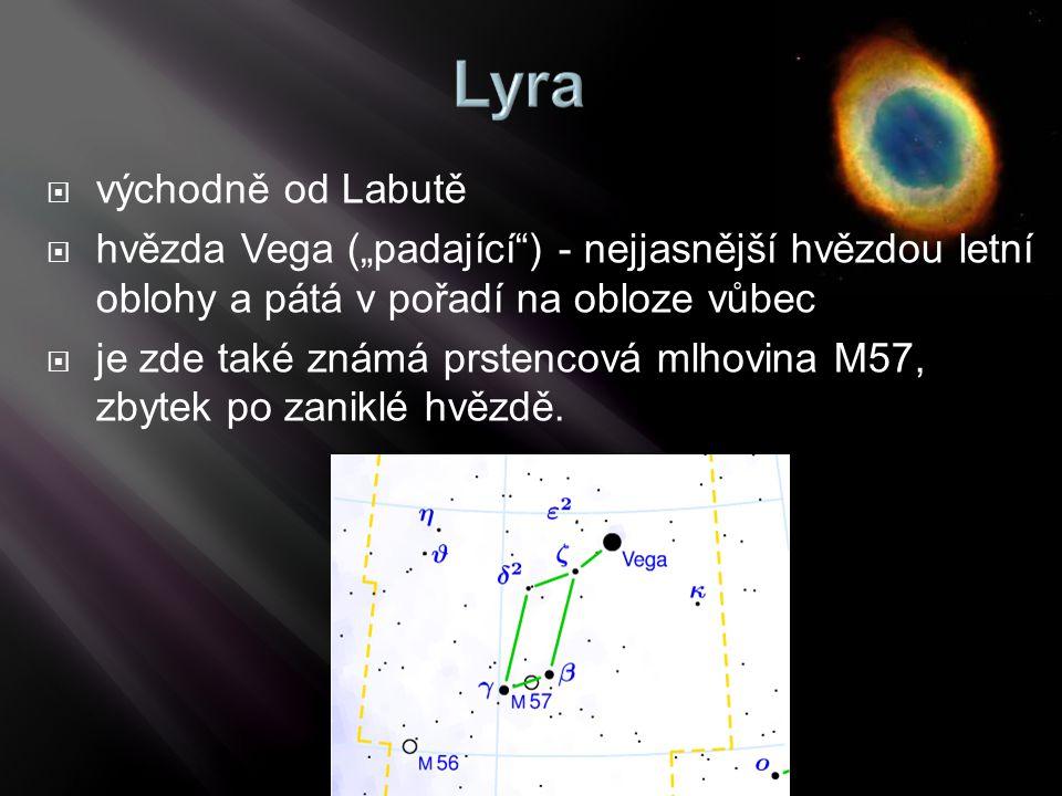 """východně od Labutě hvězda Vega (""""padající ) - nejjasnější hvězdou letní oblohy a pátá v pořadí na obloze vůbec."""