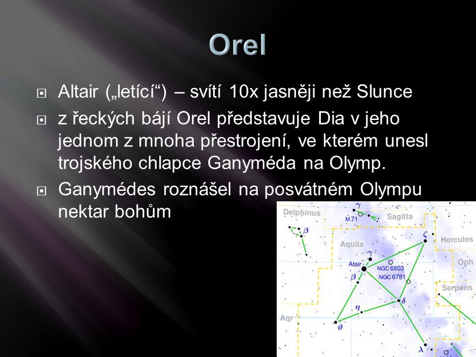 """Altair (""""letící ) – svítí 10x jasněji než Slunce"""