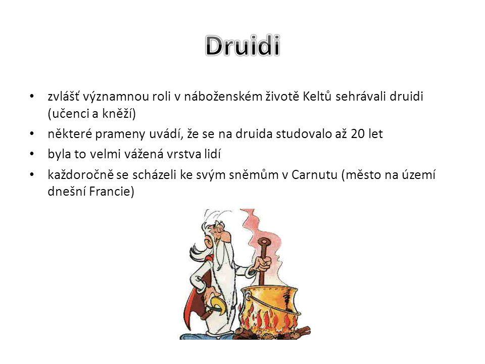 Druidi zvlášť významnou roli v náboženském životě Keltů sehrávali druidi (učenci a kněží) některé prameny uvádí, že se na druida studovalo až 20 let.