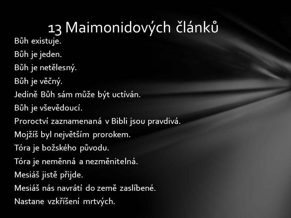 13 Maimonidových článků