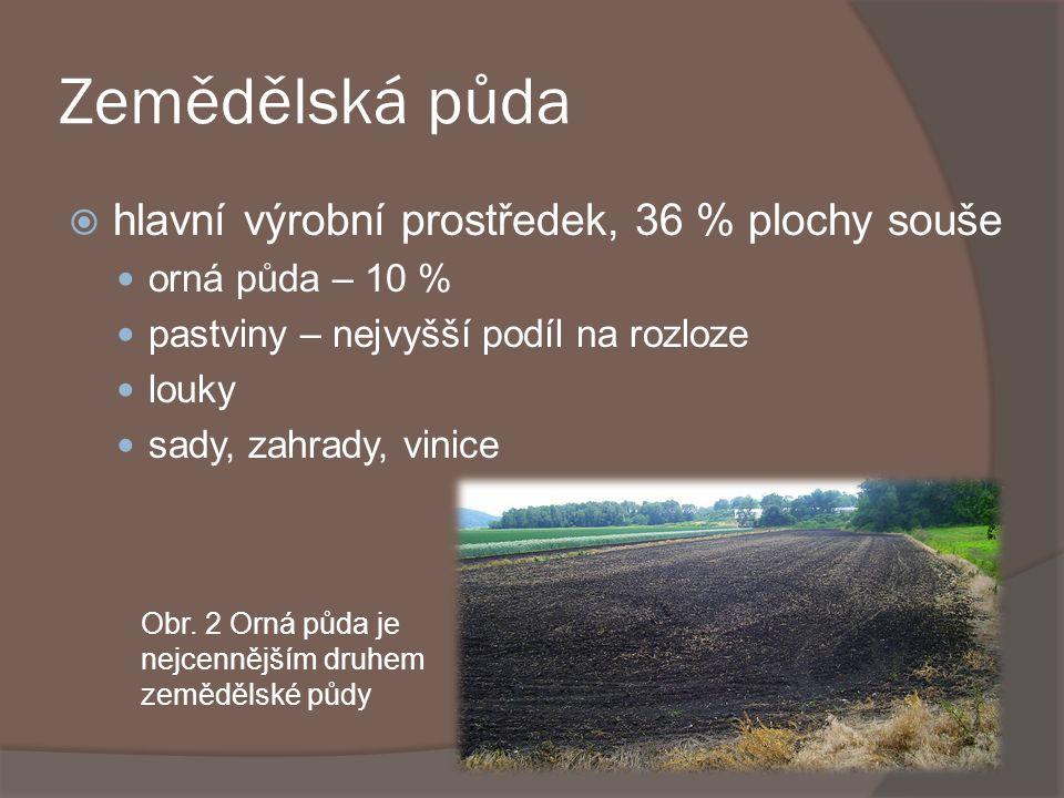 Zemědělská půda hlavní výrobní prostředek, 36 % plochy souše
