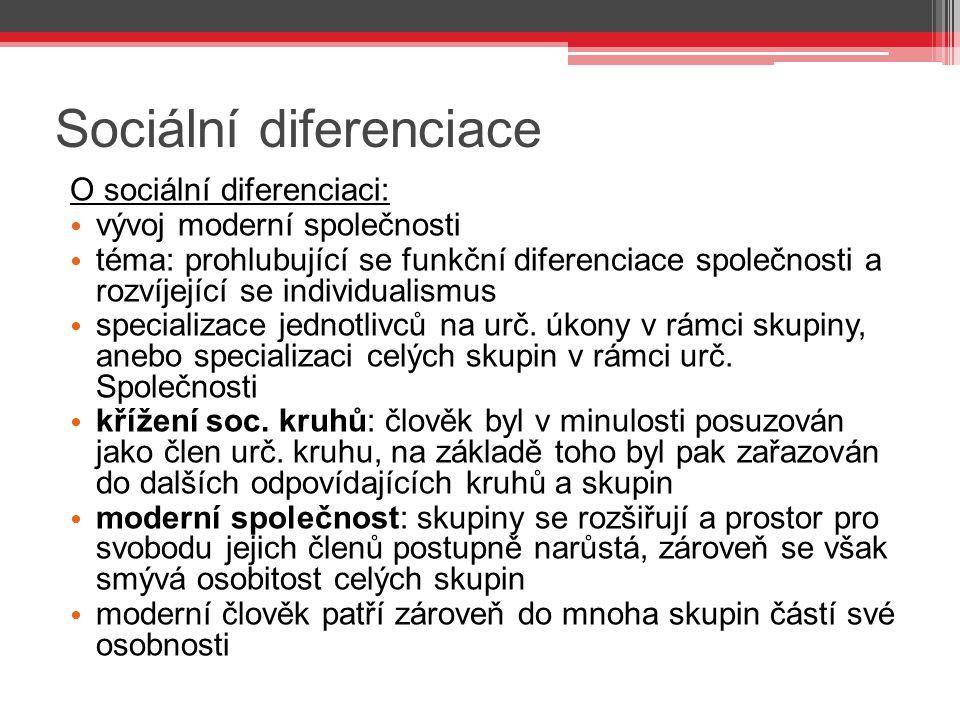 Sociální diferenciace